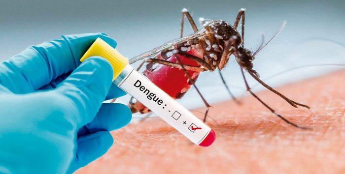 Valledupar reporta 1.347 casos de dengue en la semana epidemiológica 36